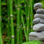 Ładny oraz uporządkowany ogród to zasługa wielu godzin spędzonych  w jego zaciszu podczas pielegnacji.